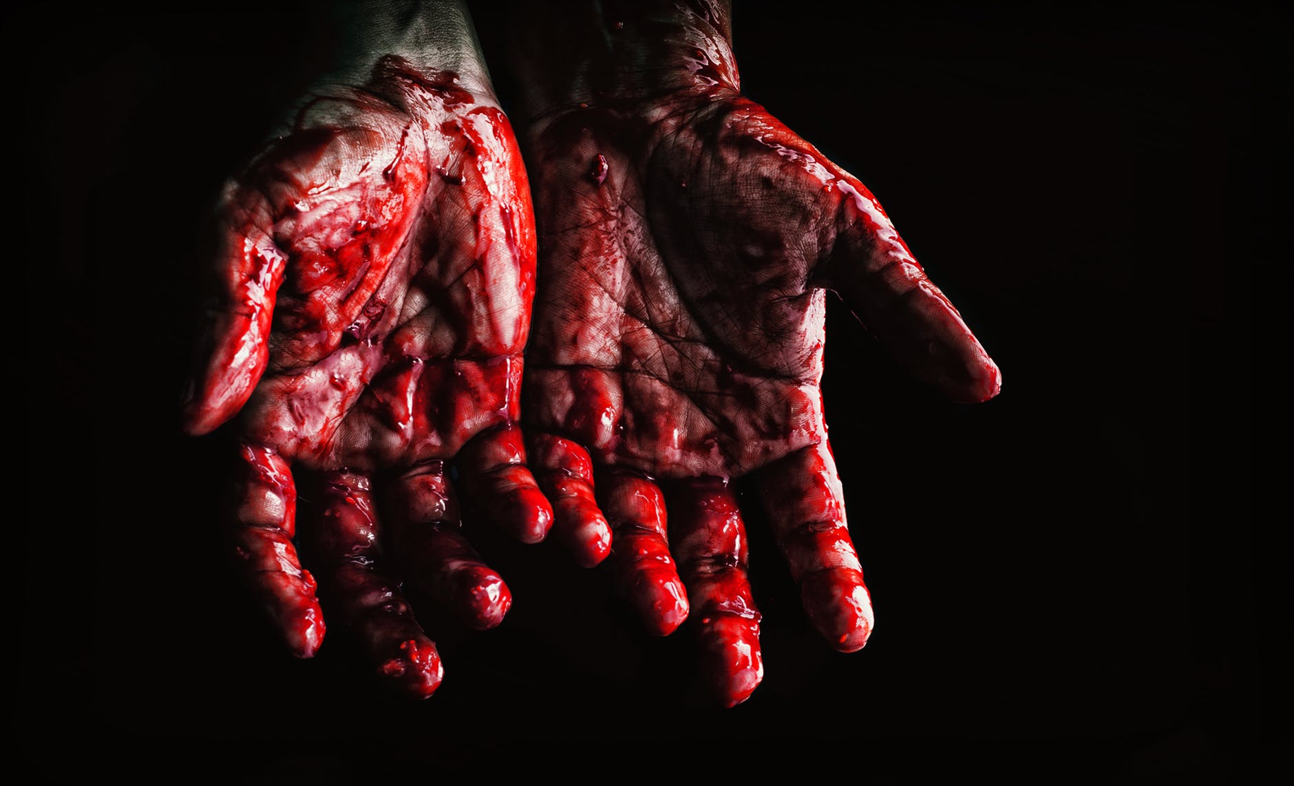 Does Jared Holt Have Blood On His Hands?