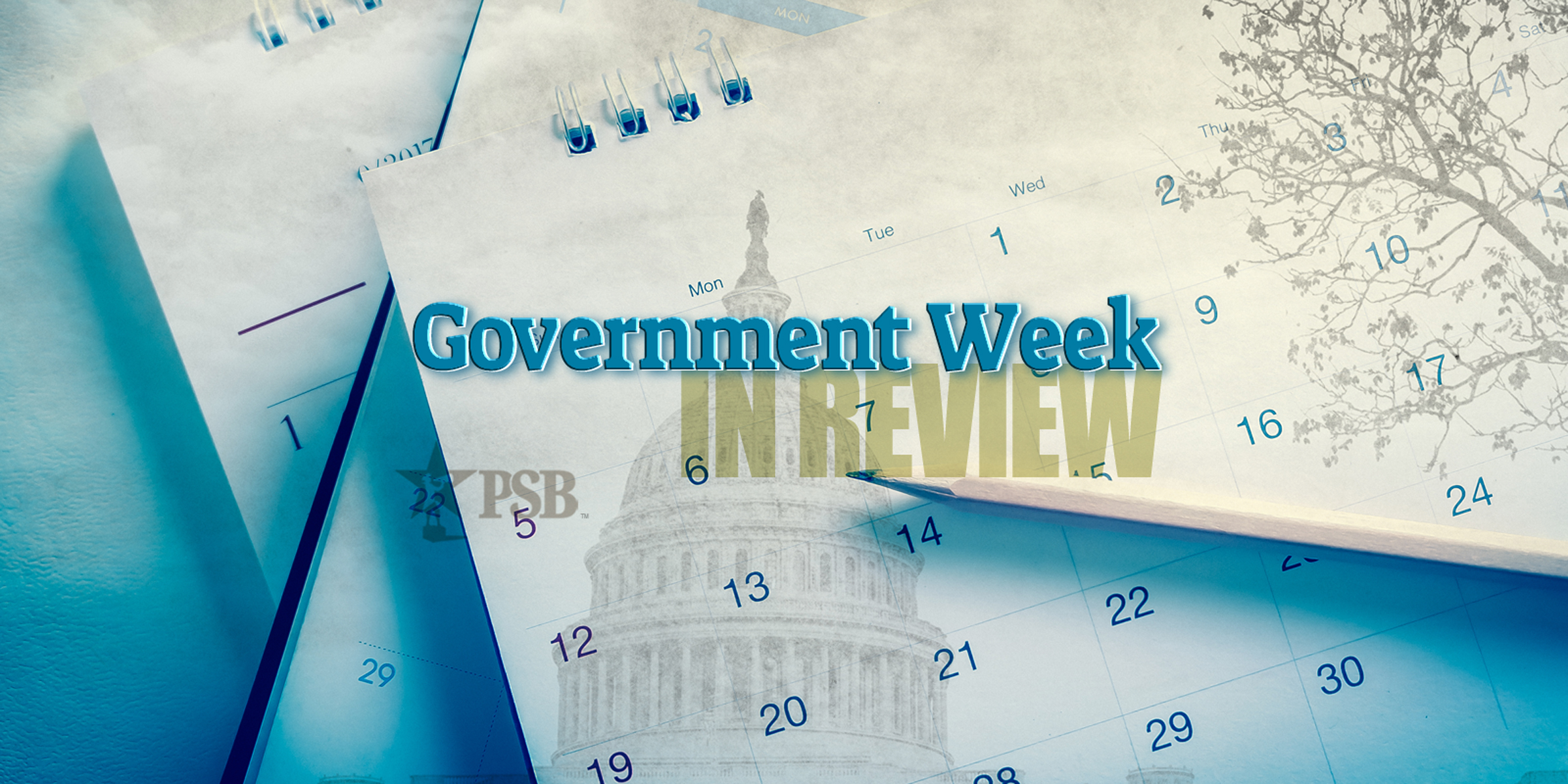 Government Week in Review