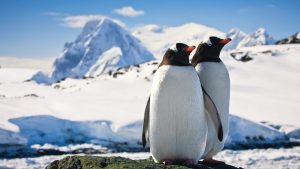 Antarctica — The Unknown Continent