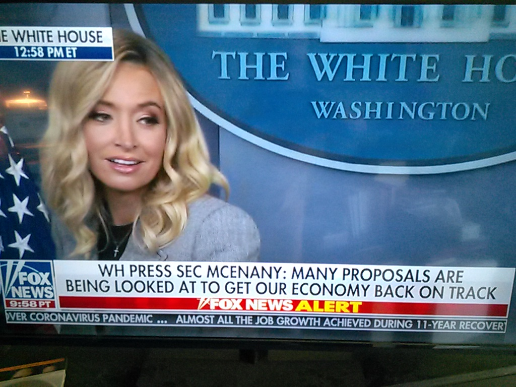McEnany Firmly Stakes Out the POTUS Platform and Tone