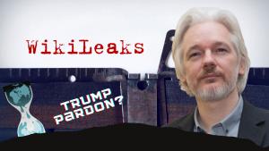 Rumors of Julian Assange Being Pardoned by Trump Swirling Online