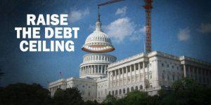 Leftists Want a Bigger Credit Card